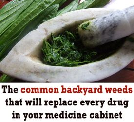 Natural Home Remedies Banner
